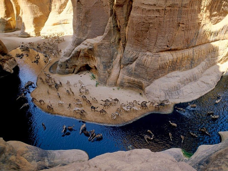 Hidden Treasure: Guelta d'Archei' Hidden Deep In The Sahara