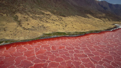 Lake Natron Tanzania' Africa's Most Dangerous Water Body