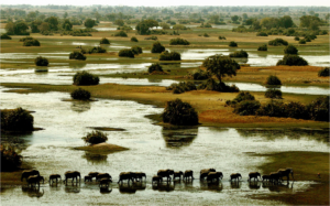 Top Tourist Destinations In Africa & Beautiful Places In Africa To Visit