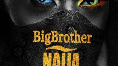 Benefits of BBNaija live stream for Nigeria, Beyond its Entertainment Value