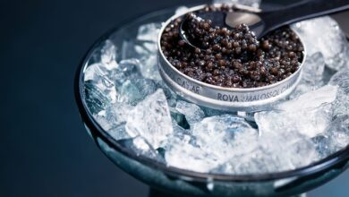 Madagascar Produces Africa's first & Only Luxury Food Caviar, Rova Caviar